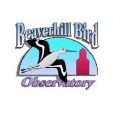 Beaverhill Bird Observatory is a partner of NCC
